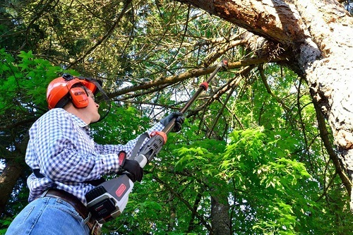 Battery powered cordless pole saw