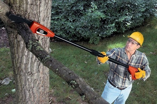 Man pruning with pole saw