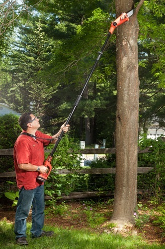 Man using cordless pole saw