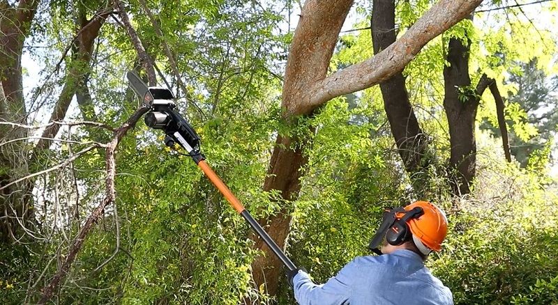 The Electric Pole Saw Vs Gas Pole Saw Debate